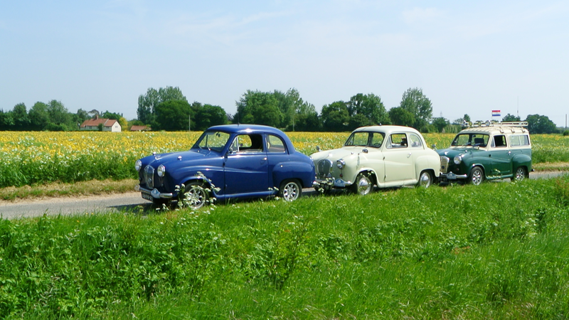 Austin A30-A35's Amidst the fields